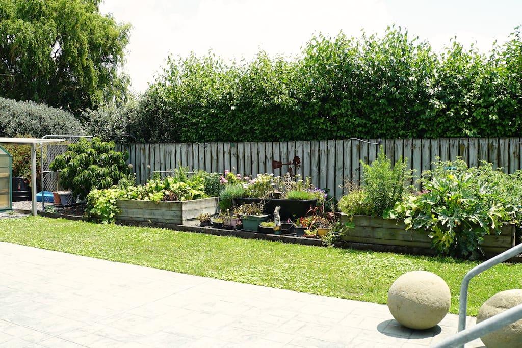 Vegetable garden available for fresh produce (Seasonal).