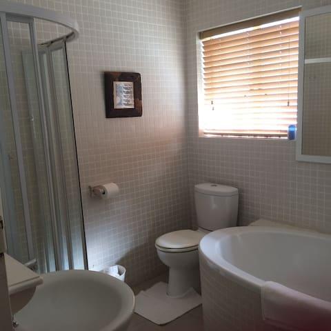 Main Bathroom, Jan 18