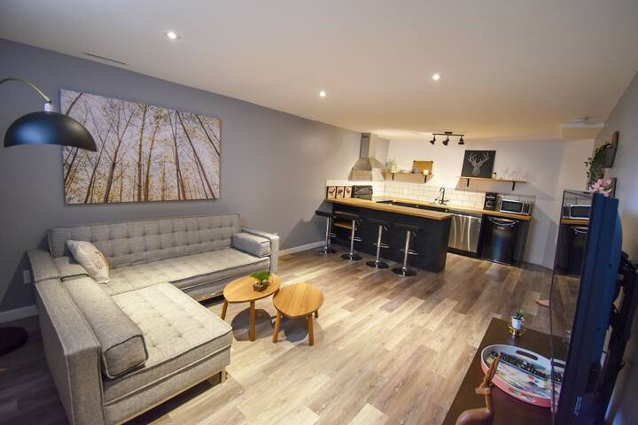 Modern spacious two bedroom basement suite