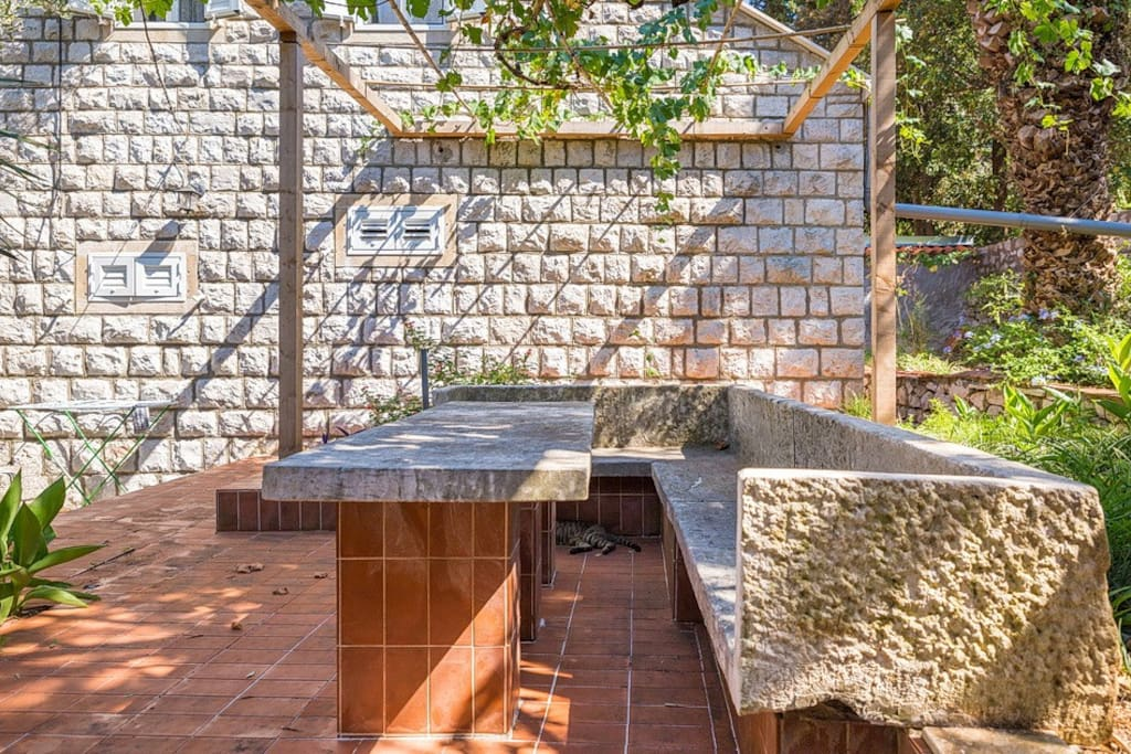 Garden table and barbecue