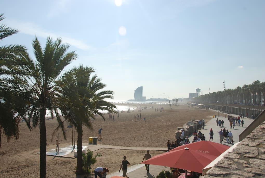800m-BARCELONETA BEACH AND BEACHFRONT CLUBS & RESTAURANTS