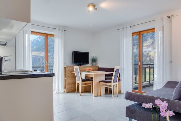 """Modern Apartment """"Hofschenke Pfeiftal Bergblick"""" with Terrace, Garden & WLAN; Parking Available, One Dog Allowed"""