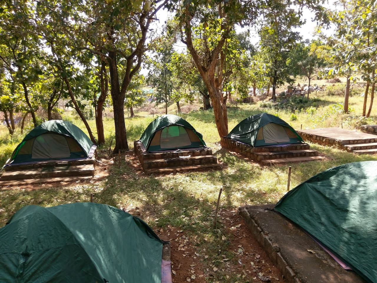 View of tents on raised plinths