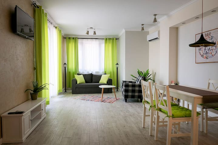 Shahbazian  House  Spacious  1-Bedroom  Apartments