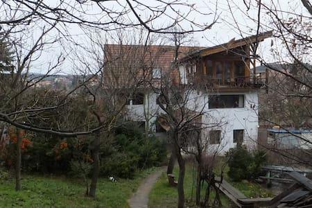 Különleges lakás Pilisborosjenőn - Pilisborosjenő - Wohnung