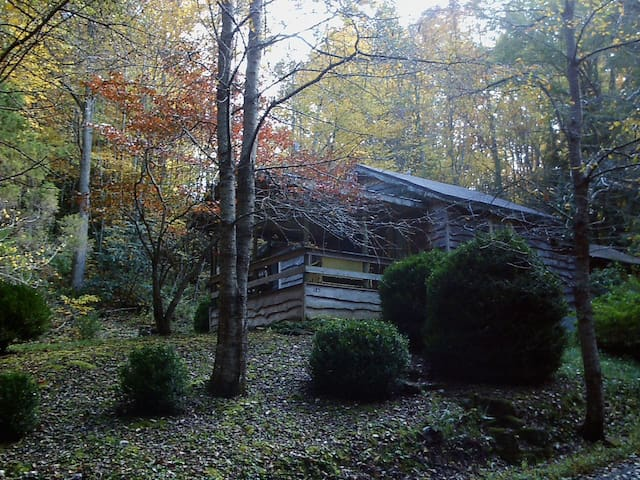Rustic, quaint cabin in Celo, NC - Burnsville - House