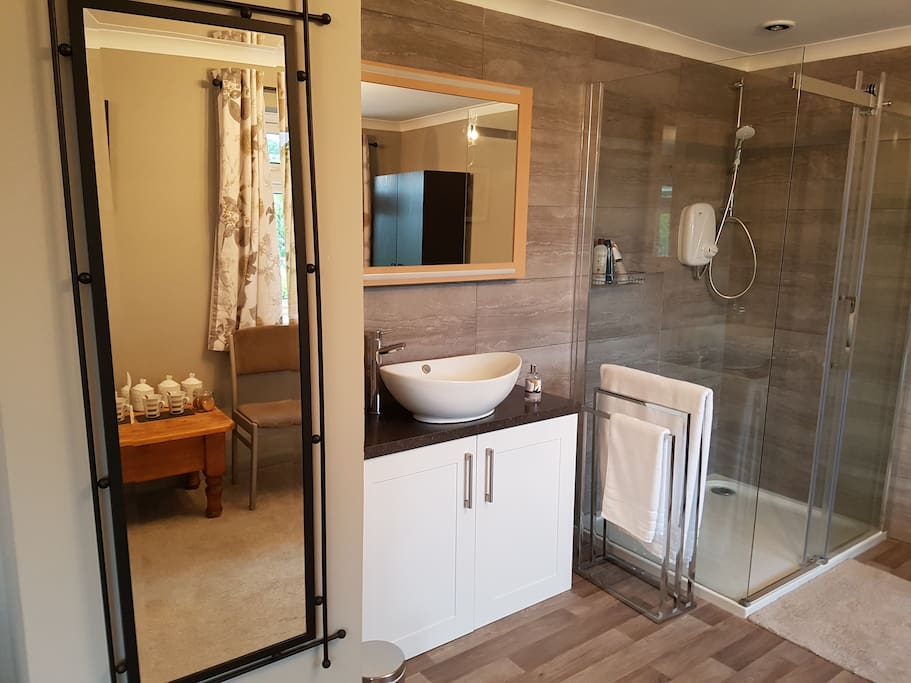 Mirrors, Shower and Basin area