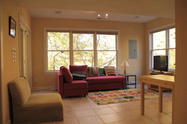 Clean apt near UNC w wooded view, walk to Franklin