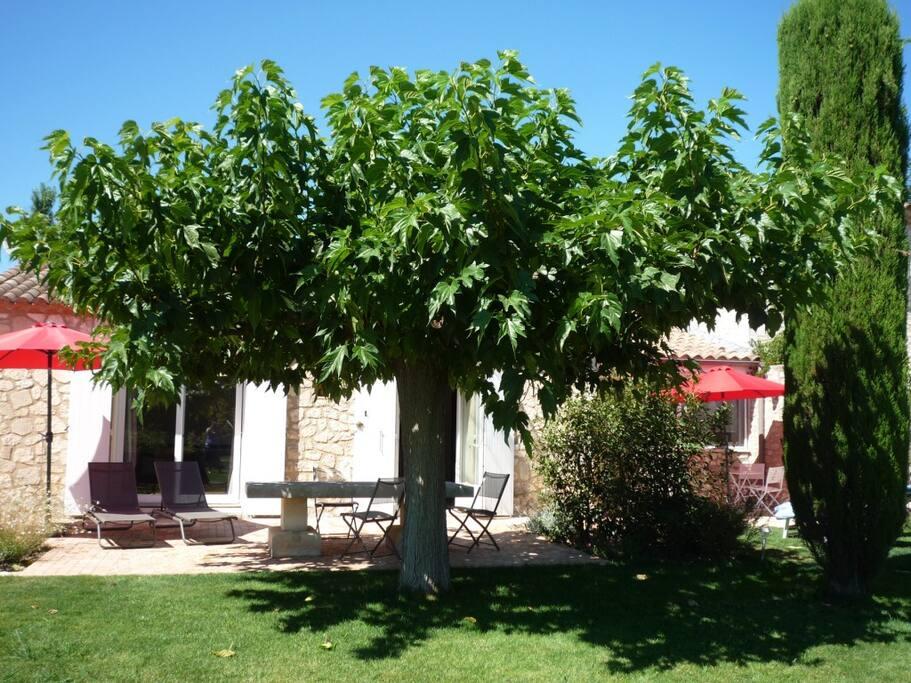 Deux terrasses et un jardin privatif pour le Mazet
