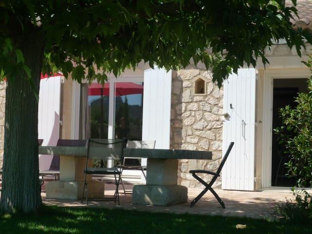 La terrasse du Mazet à l'ombre du platane