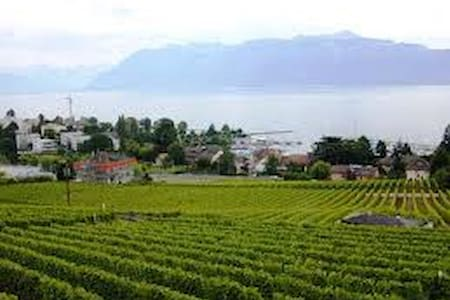 Family apartment 90m2 Lausanne - Pully