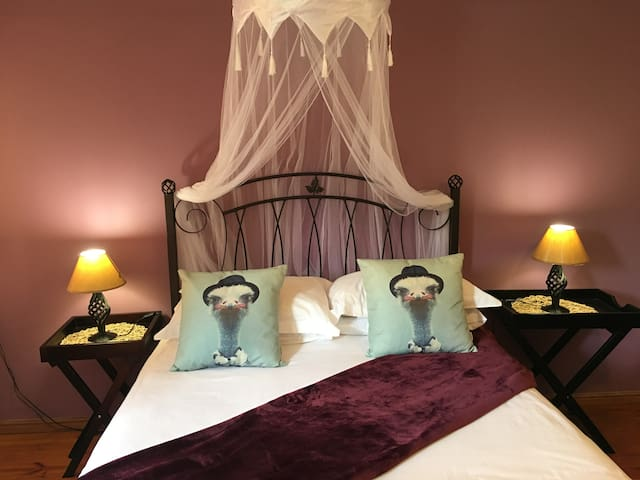 Karoo Life Bed & Breakfast - Ostrich Room