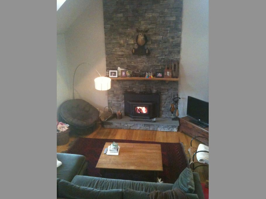 living room with woodstove, cable tv, wii