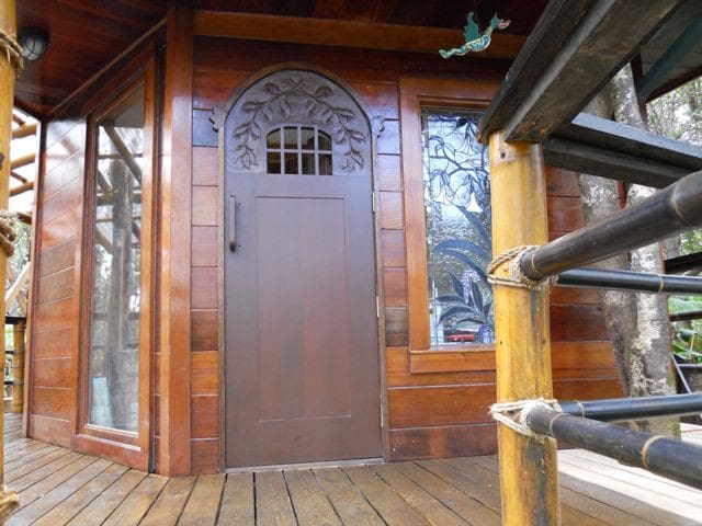 front door with speakeasy window