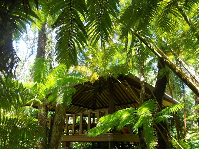 rainforest pavilion, wedding venue