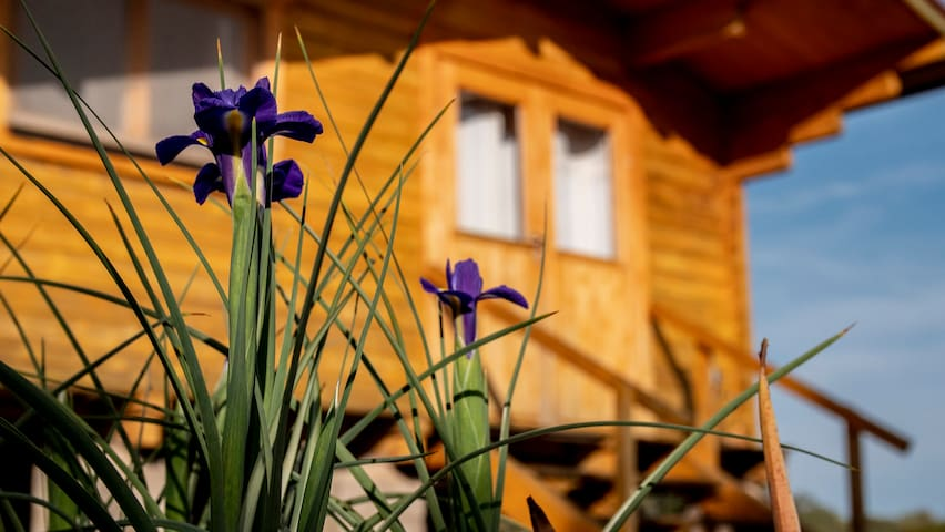 Casa do Sol - Pure nature wooden houses