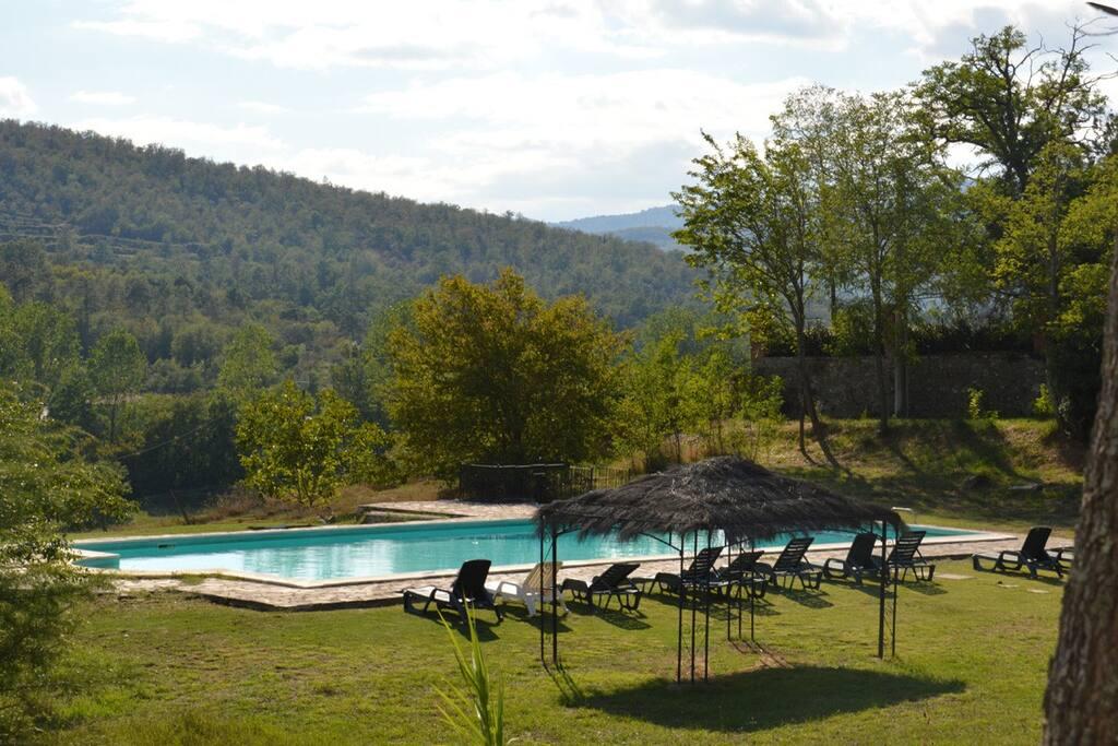 panoramic pool 10 x 20 m