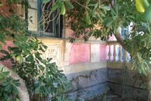 Facade with pitosforo tree