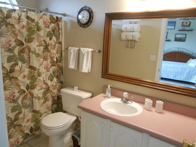 Main Floor Bedroom Attached Bath