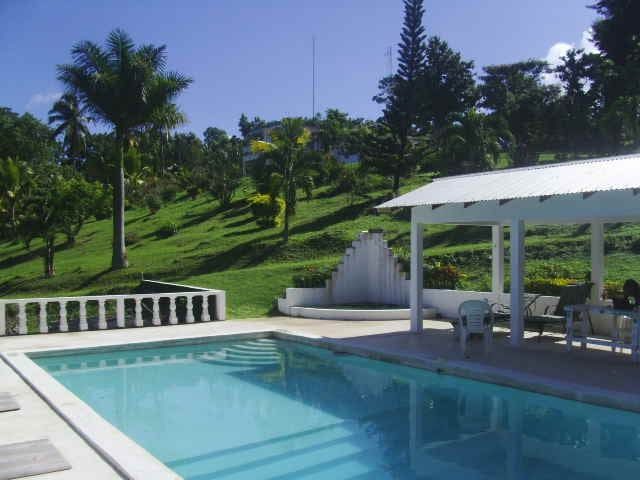 Studio cabin with pool   - Port Antonio - Hytte