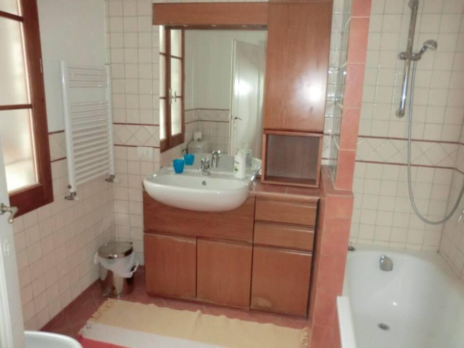 Bathroom 1 (shower and bath tub)