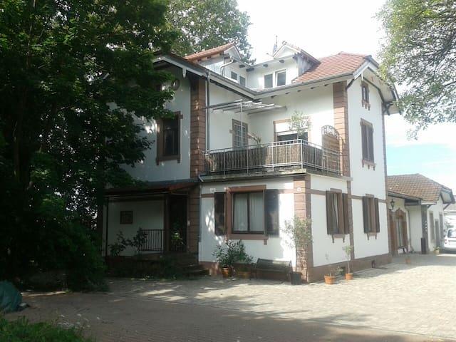 schöne 2-Zi.-Wohnung / zentral - Freiburg - Villa
