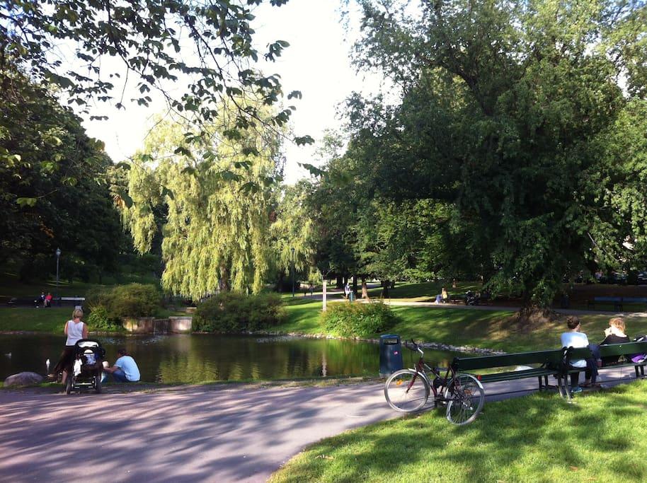 St.Hanshaugen park.