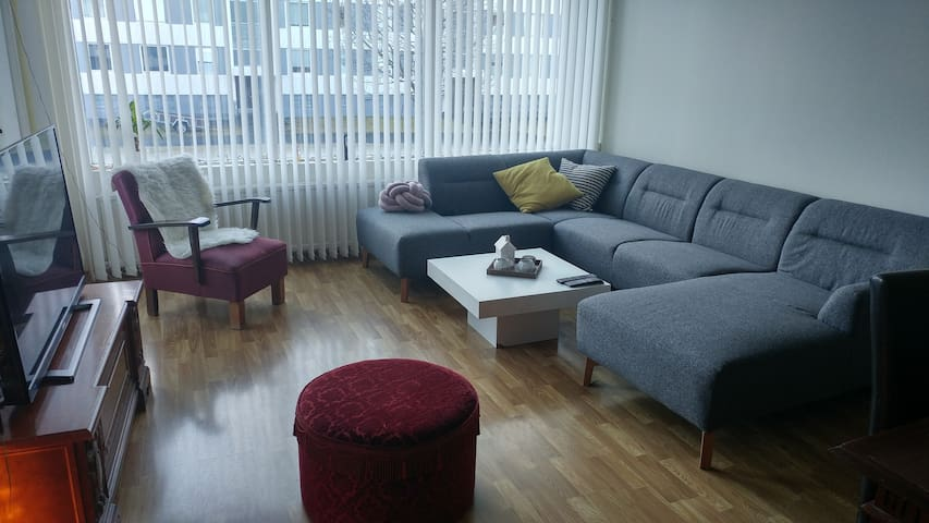 Spacious apartment in a quiet neighbourhood - Reykjavik - Leilighet