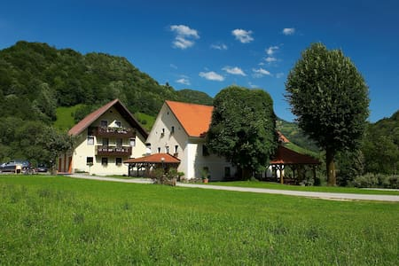 IDYLLIC FARM STAY Zelinc - B&B - Straža