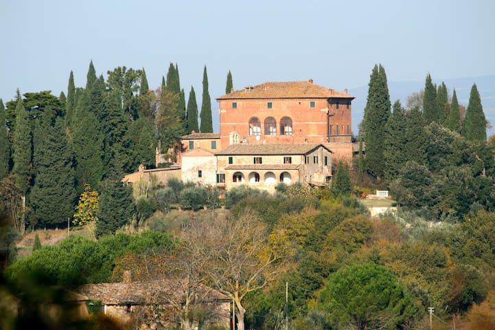 Romantic Apt. Farmhouse with olive trees