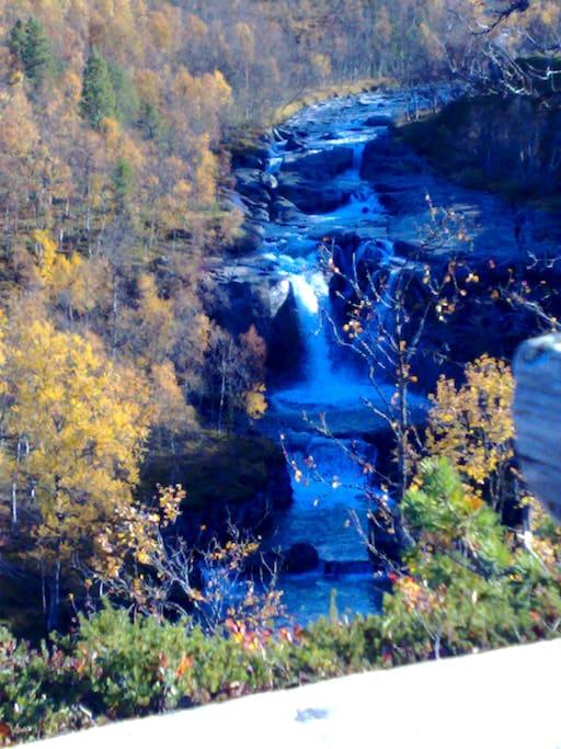 Waterfall in the neighborhood
