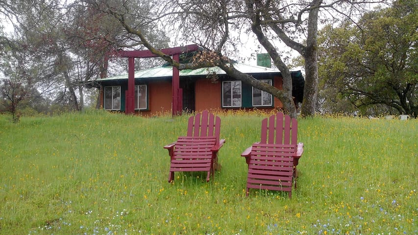 One hour from Yosemite Pk. Cottage in the woods