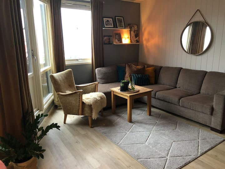 Flott leilighet med 2 soverom, sentralt i Tromsø.