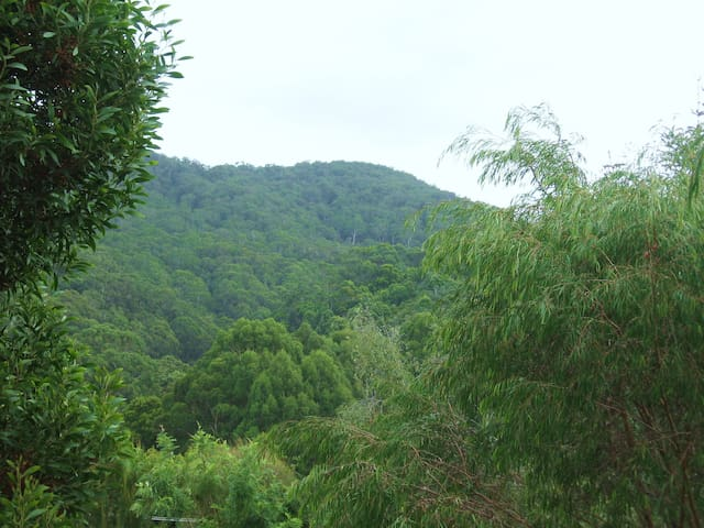 HWYE unit with Valley, ocean views - Wye River - Apartment