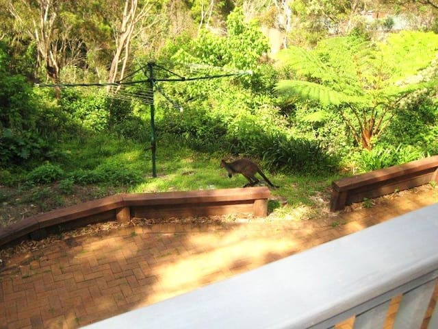 Private large studio, tranquil bush setting, views