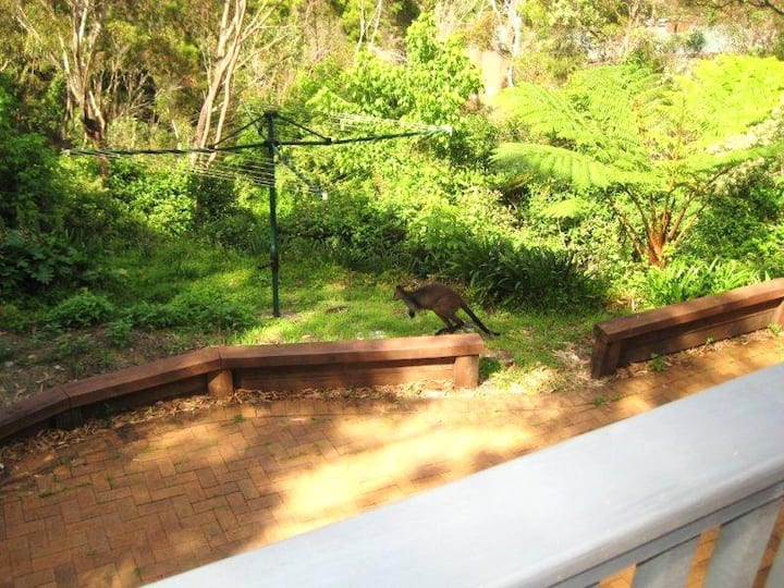Private large studio, tranquil bush setting, views
