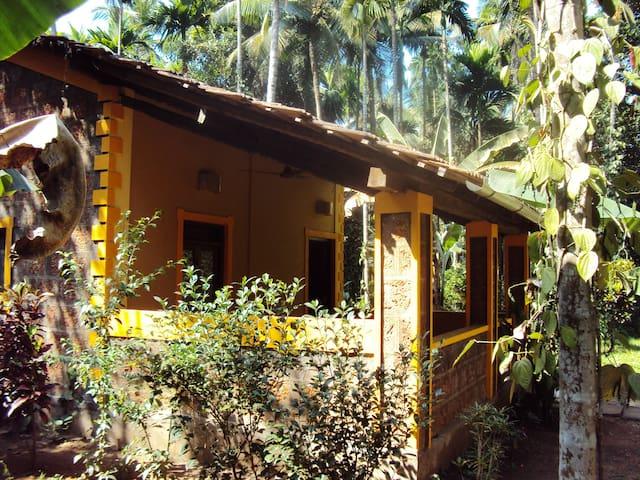 Spacious Cottage with pool on Eco-Farm in Goa - Karmane - Annat