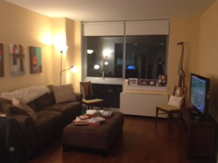 Spacious and comfortable living room with pull out couch and great view of downtown Brooklyn