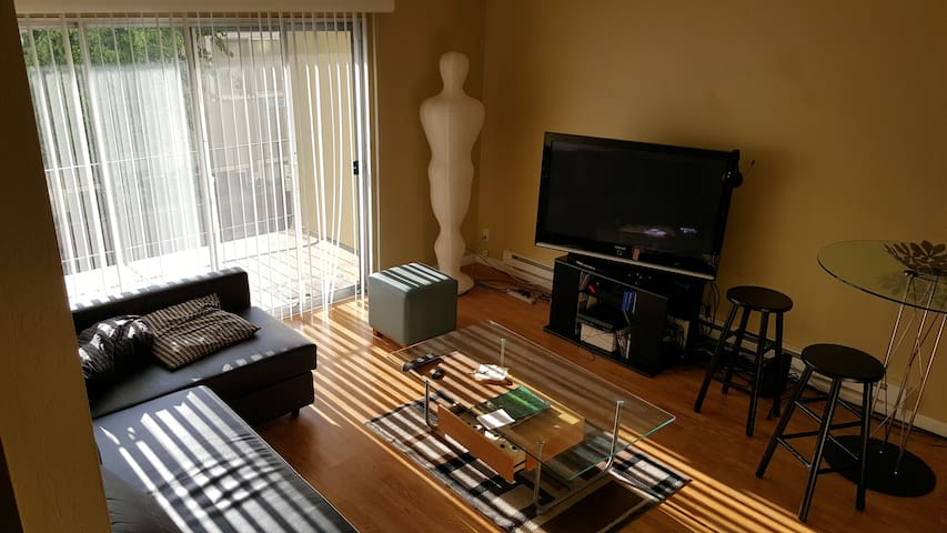 Comfortable and convenient room and apartment