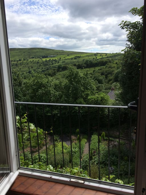View from your room!