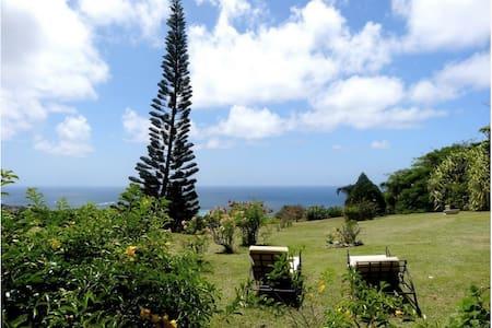 Villa avec une merveilleuse vue - Capesterre-de-Marie-Galante - Villa