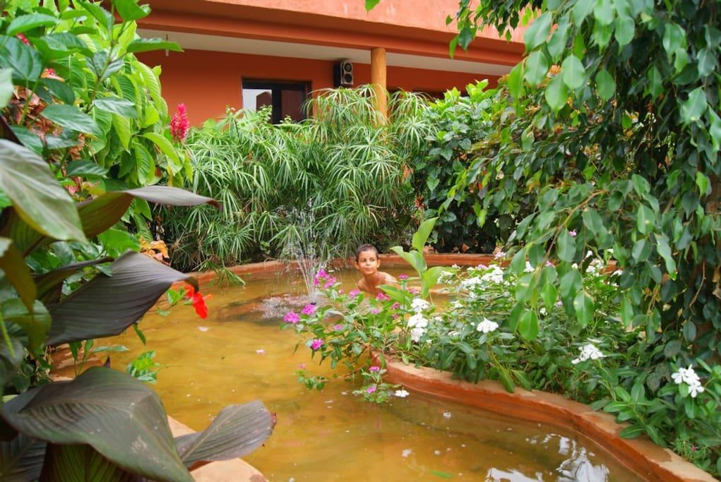 Cour intérieure avec son jardin tropical devant la chambre de 34 m2