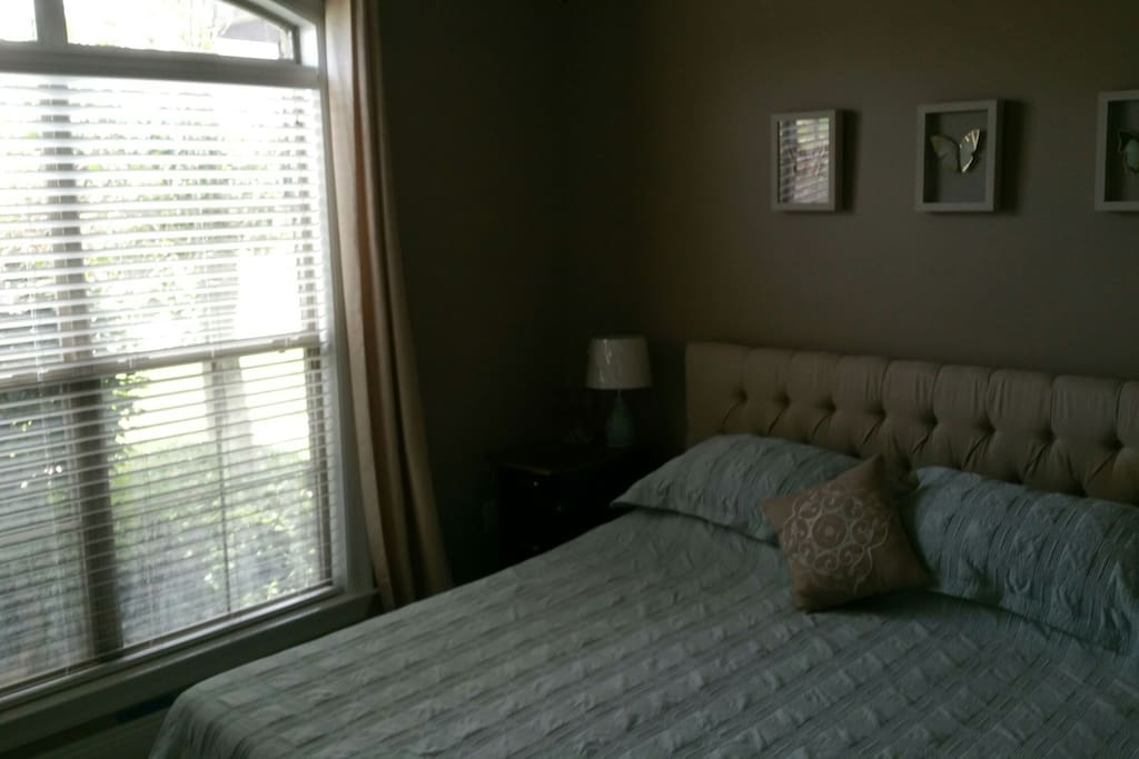 One of the guest rooms with a king size bed, walk-in closet and ceiling fan.