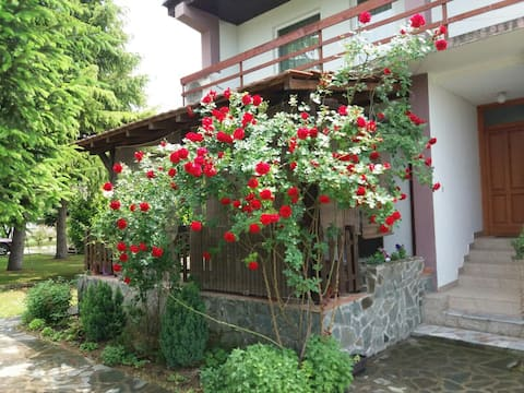 Specious Boutique hotel with big garden &BBQ house