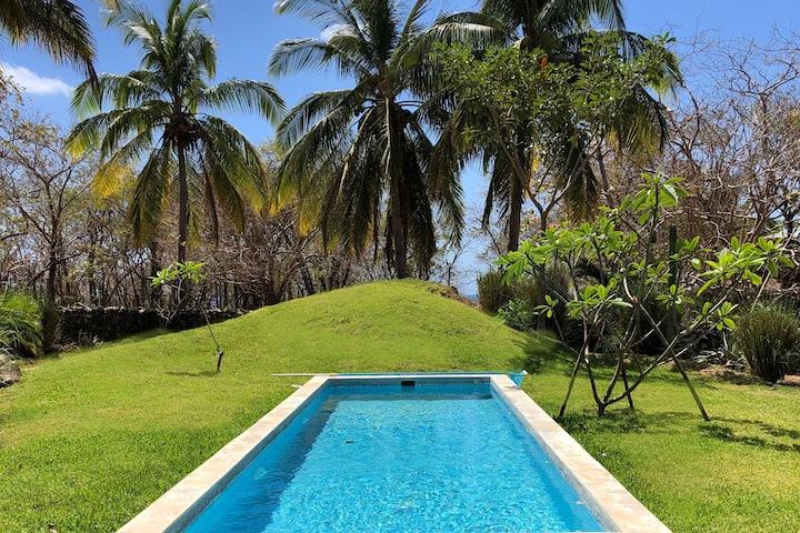 → Casa Andrea Oceanfront -Pool-Backyard-BBQ