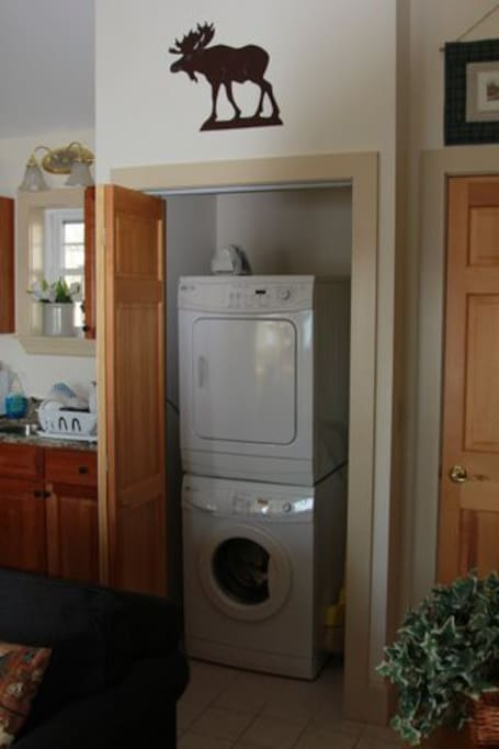 Washer and dryer for your convenience!
