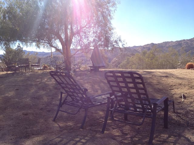 lots of outdoor seating in the sun or shade