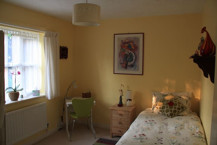 Comfy quiet single room, own bathroom, near centre