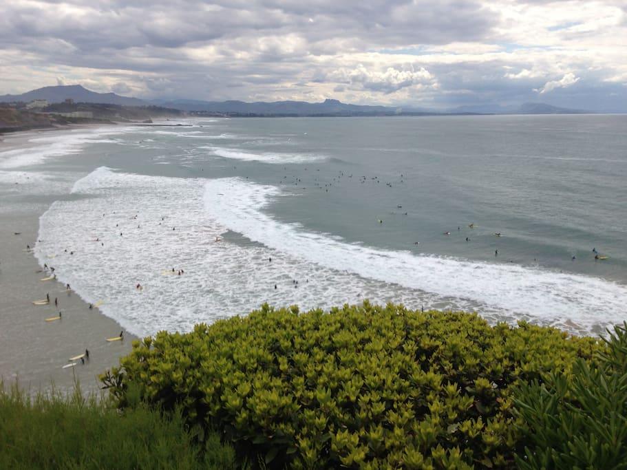 La proximité de la Côte des Basques: haut lieu du surf!
