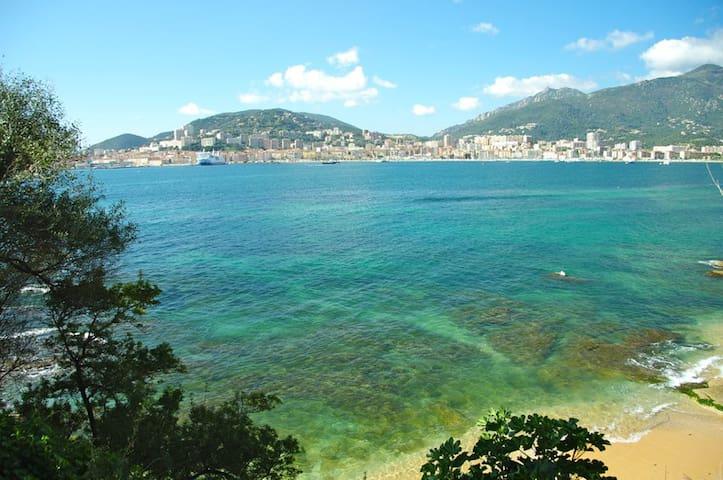 Ajaccio est la ville la plus proche. Avec Porticcio où les plages sont idylliques !